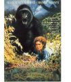 GORILLAS IN THE MIST: THE STORY OF DIAN FOSSEY – Gorilla nella nebbia – La storia di Dian Fossey di Michael Apted (USA, 1988, 130′)