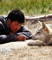 Wolf Totem – L'ultimo lupo, Jean-Jacques Annaud